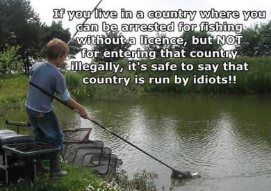 usa govt logic