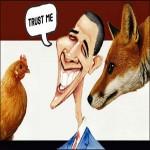 obamafox-henhouse