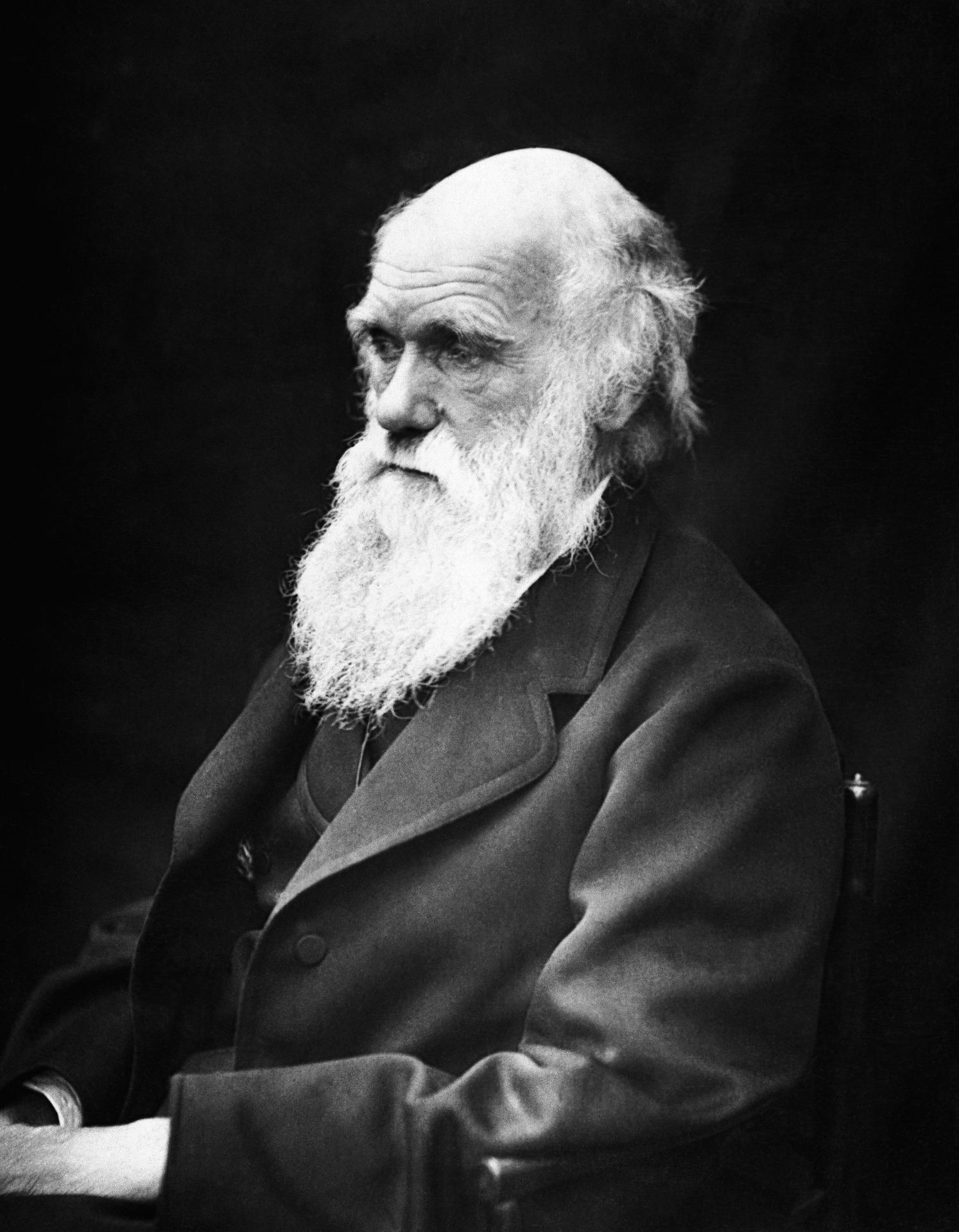 charles-robert-darwin-62911_1920