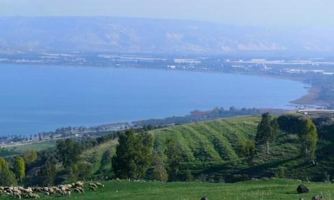 Kinnereth - Sea of Galilee (Panorama)