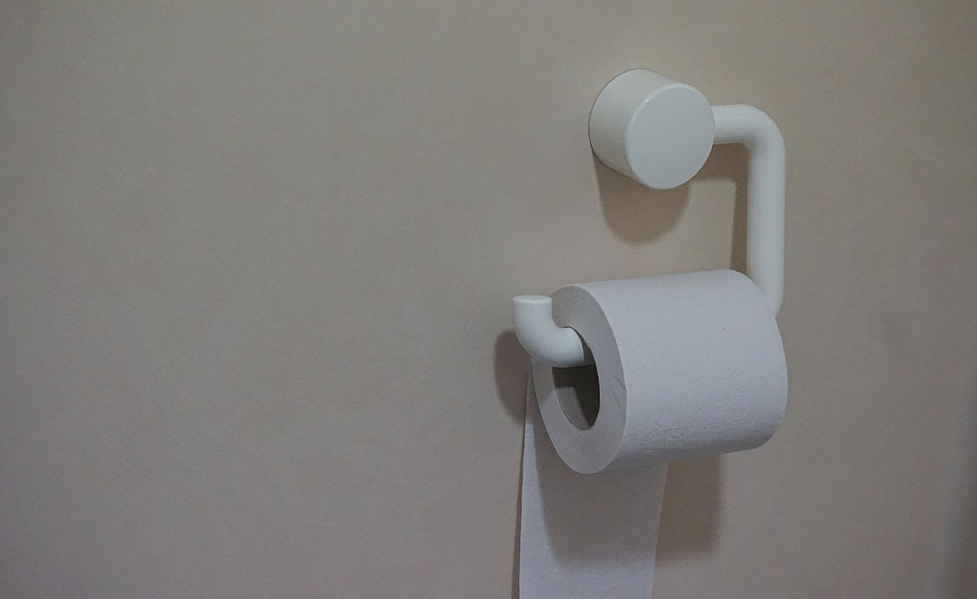 toilet paper-2588827_1920